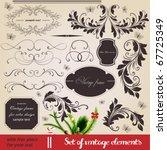 vector set  calligraphic... | Shutterstock .eps vector #67725349