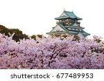 Osaka Castle In Cherry Blossom...
