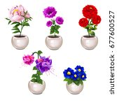 set of bright blooming potted... | Shutterstock .eps vector #677600527
