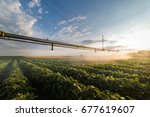 irrigation system watering a...   Shutterstock . vector #677619607