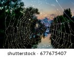 a spider at night on a web with ... | Shutterstock . vector #677675407