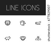 set of 6 editable zoology icons....