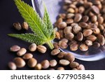 abstract background with macro... | Shutterstock . vector #677905843