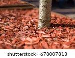 red mulch used for garden... | Shutterstock . vector #678007813