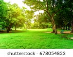 green park and green tree in... | Shutterstock . vector #678054823