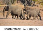 Desert Elephants Are Not A...
