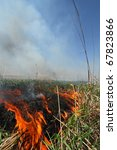 Prescribed Prairie Burn On The...