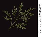 elegant branch with leaves ... | Shutterstock .eps vector #678316993