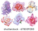 set with bright flowers. rose.... | Shutterstock . vector #678339283
