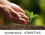 hands of farmer growing and... | Shutterstock . vector #678497143