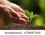 hands of farmer growing and... | Shutterstock . vector #678497143