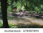 beaver's lodge  beaver  beaver...   Shutterstock . vector #678587893