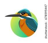 kingfisher . predatory birds... | Shutterstock . vector #678595447