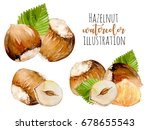 set of watercolor hazelnuts... | Shutterstock . vector #678655543