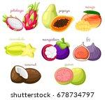 exotic fruits vector set juicy... | Shutterstock .eps vector #678734797