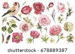 set watercolor elements of... | Shutterstock . vector #678889387