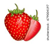 realistic strawberry on a white ... | Shutterstock .eps vector #679004197
