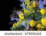 bouquet bunch of fresh lavender ... | Shutterstock . vector #679056163