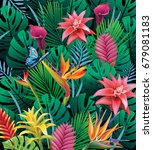background with exotic tropical ... | Shutterstock .eps vector #679081183