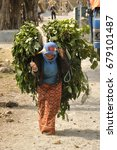 Peasant Woman Works Nepal ...
