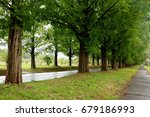 a tree lined road | Shutterstock . vector #679186993