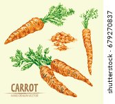 digital vector detailed line... | Shutterstock .eps vector #679270837