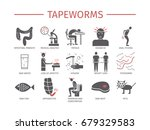tapeworms. symptoms  treatment. ... | Shutterstock .eps vector #679329583