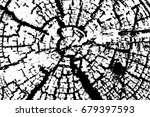 old wood rings saw cut tree... | Shutterstock .eps vector #679397593