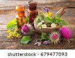 tincture bottles and healing...   Shutterstock . vector #679477093