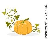 Big Ripe Pumpkin With Swirly...