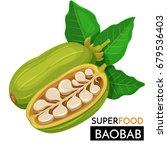 baobab vector icon. healthy... | Shutterstock .eps vector #679536403