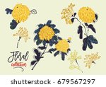 vector blooming yellow... | Shutterstock .eps vector #679567297