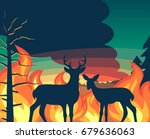 Forest Wildfire With Deer And...