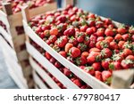 close up image of fresh... | Shutterstock . vector #679780417