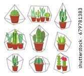 geometric florarium with cactus ... | Shutterstock .eps vector #679781383