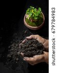 handle soil and plant green... | Shutterstock . vector #679784983