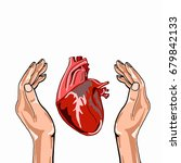 realistic heart in palm   Shutterstock . vector #679842133