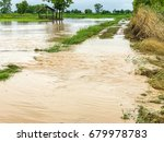 agriculture rice field flooded... | Shutterstock . vector #679978783