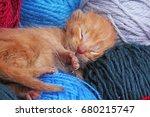 new born baby cat sleeping.... | Shutterstock . vector #680215747