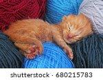 new born baby cat sleeping.... | Shutterstock . vector #680215783