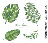 set of  hand drawn tropical... | Shutterstock .eps vector #680485327