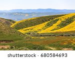 spring wildflowers near carrizo ...   Shutterstock . vector #680584693