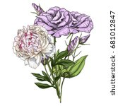hand drawn bouquet of eustoma... | Shutterstock .eps vector #681012847