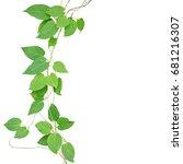 heart shaped green leaf... | Shutterstock . vector #681216307