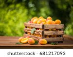 fresh ripe apricots in a wooden ... | Shutterstock . vector #681217093