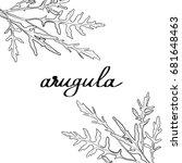 vector image frame with arugula ... | Shutterstock .eps vector #681648463