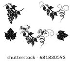 the stylized grapevine with...