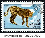 hungary   circa 1981  a stamp... | Shutterstock . vector #681936493