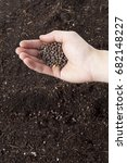 seeds being planted into... | Shutterstock . vector #682148227