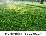 background of green fresh grass ... | Shutterstock . vector #682238227
